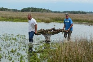 driftwood island 046