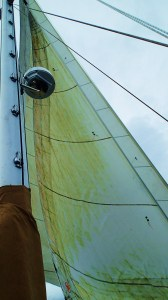 Use it or lose it? This is what happens when you leave your sails furled all winter.