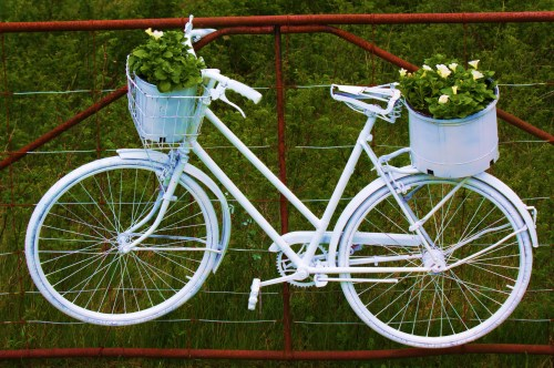 White Bike when I die, hang me on the gate and put flowers in my arms