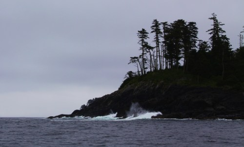 Land's end The northern tip of Pine Island