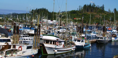 Mixing work with pleasure boats. some of the moorage in Port Hardy