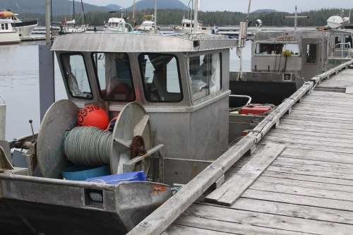 """Don'tcha buy no ugly boat! Local """"Punts"""" not pretty but very handy."""