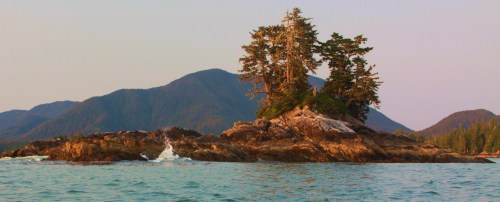 Landfall Walter Islet, near Port Blackney. The forest manages a firm grasp every place possible. This islet is in Port Blackney and is only a few metres from a cove where Captain Vancouver careened his vessel and took on a deck load of spars.