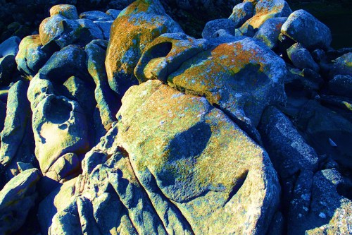 Rock On There are miles of sandstone shoreline throughout the islands of the Salish Sea