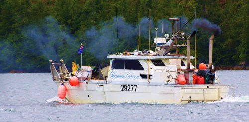 """If the smell of your own smoke don't drive you crazy..."" I met this belching apparition in Gunboat Passage, a few minutes from Shearwater. I considered this as a last warning t go on by. I turned in... just to see what comes next."