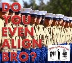 Do You Even Align Bro