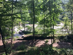 Family hike at Sweetwater Creek