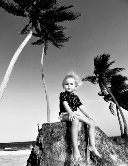 Palm Tree Mama