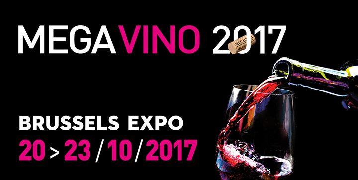 Дегустация грузинских вин на выставке Mega Vono в Брюсселе