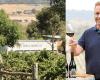 Idyll Wine Co