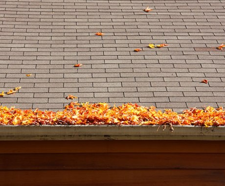 Avoid Clogged Gutters This Fall