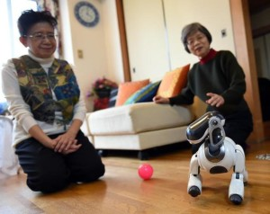 Hideko Mori (L) and her sister Yasuko watch their robot pet AIBO playing at Hideko's home in Tokyo ©Toshifumi Kitamura (AFP) {Courtesy: Daily Mail]