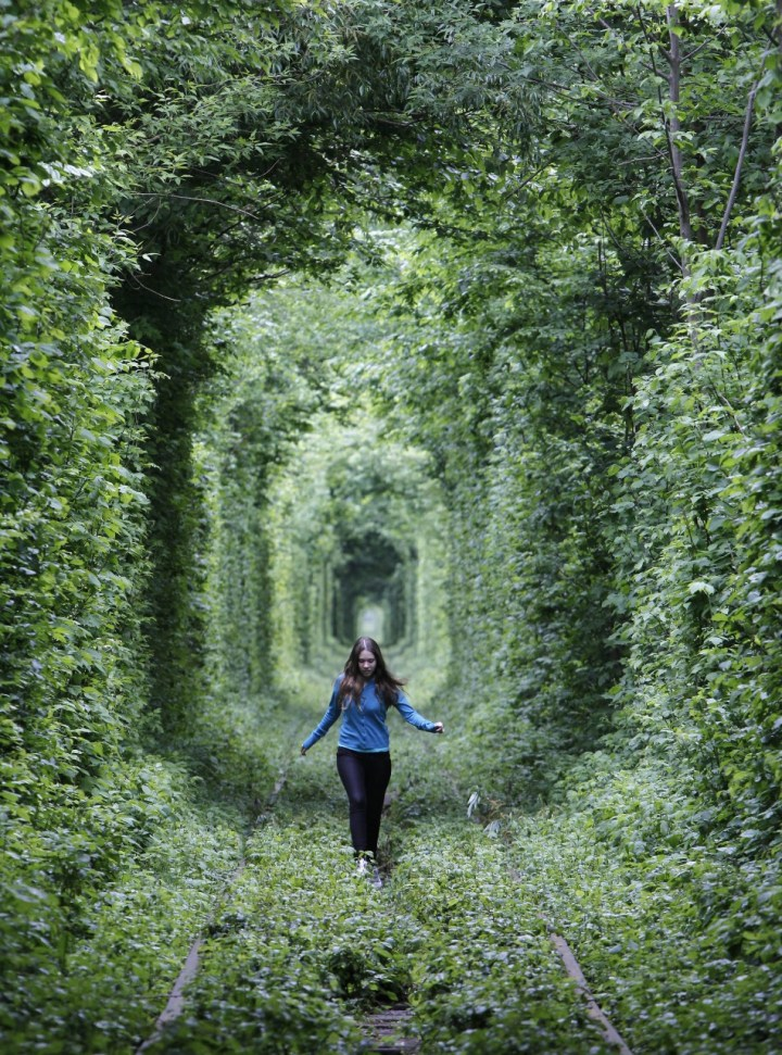 unused-railway-track-ukraine-forms-into-tunnel-love (1)