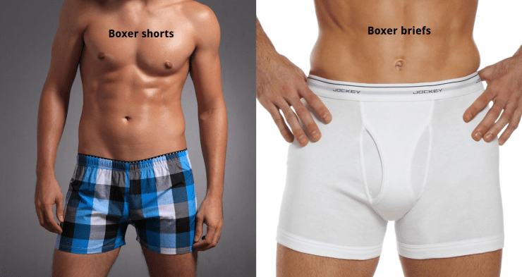 Types of Boxers