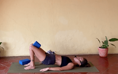 30min Beginners Yoga sequence sitting and in your back (English)
