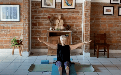 50min Active Hatha Gentle Class – Twisting and Bending