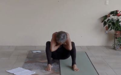 30-min Stretching Class (English)