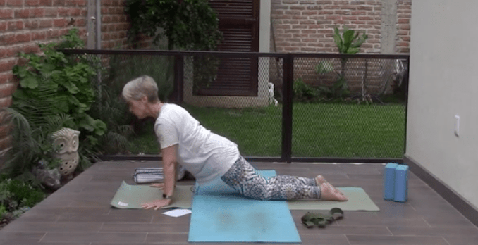 55min Therapeutic Yoga for your Spine