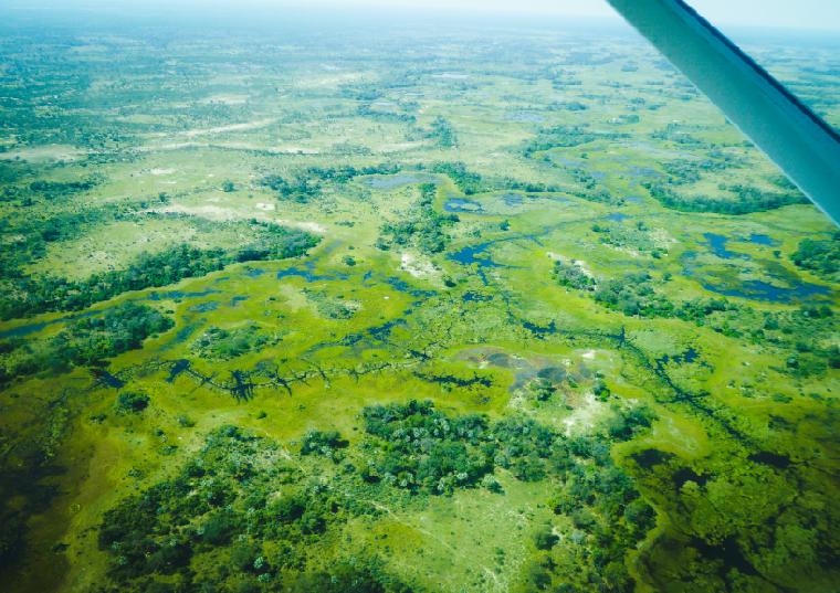 Viaggio in Botswana