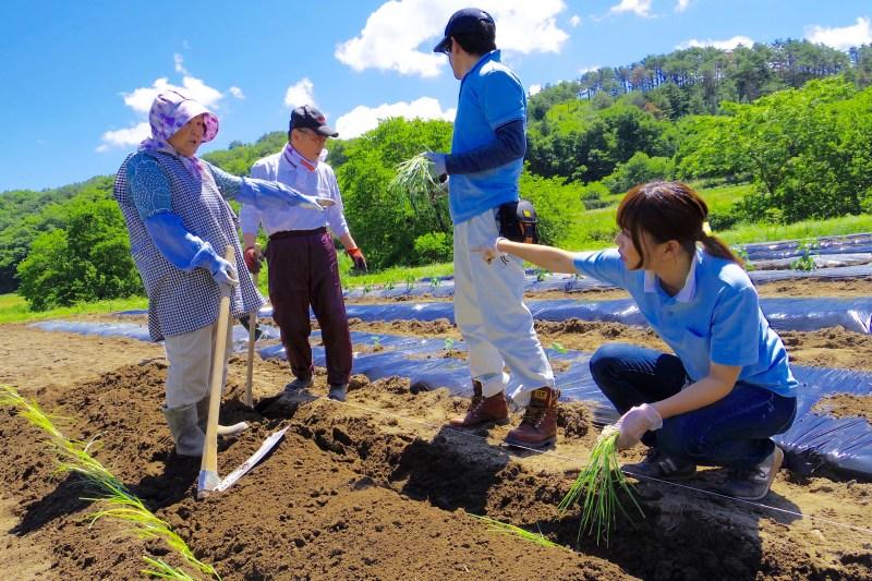 田村市復興応援隊の活動写真_住民・応援隊協働農園での作業中の様子