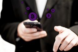 Bitcoin Payments on websites