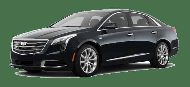 Luxury Sedan - Driven Miami Fleet