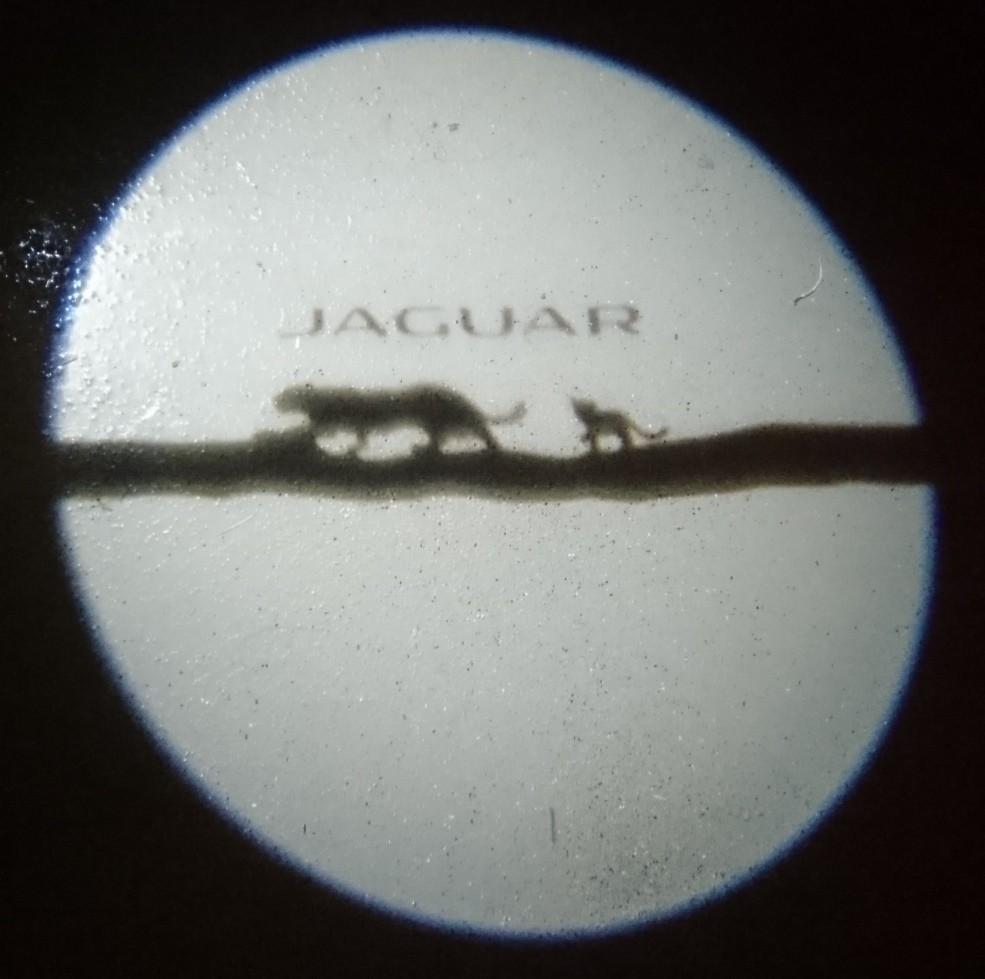 Jaguar E-PACE R-Dynamic S P250 puddle light