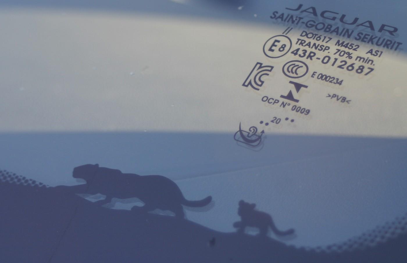 Jaguar E-PACE R-Dynamic S P250 windscreen detail