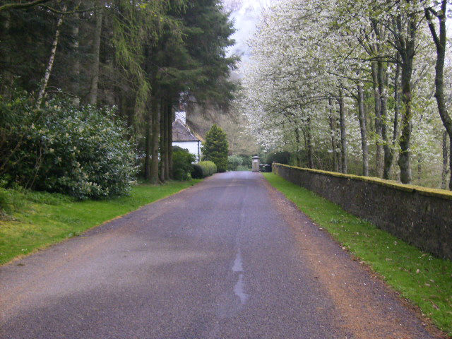 Tarmacadam laid on a country house driveway - Tarmac Drives