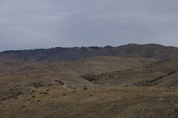 The Boise foothills.