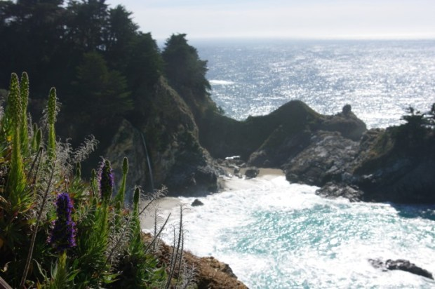 The falls at Julia Pfeiffer Burns State Park.