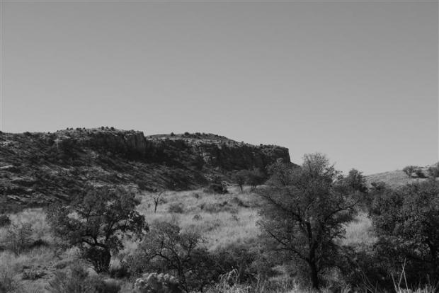 View from the Molino Basin Campground, Mt. Lemmon.