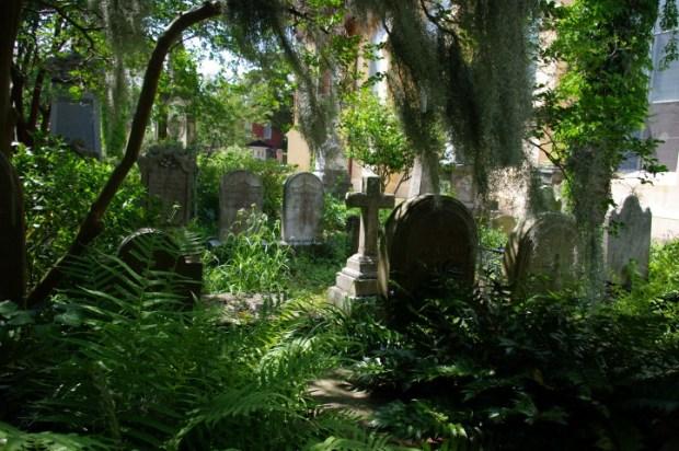 The overgrown Unitarian cemetery.