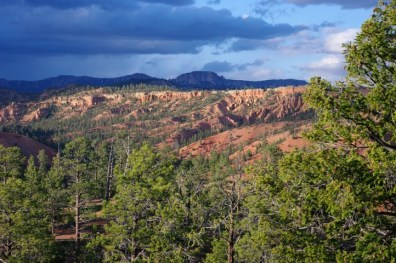 Looking north over Red Canyon.