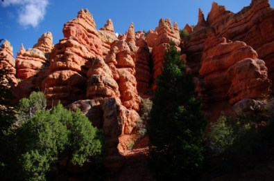 The Pink Ledges in Red Canyon.