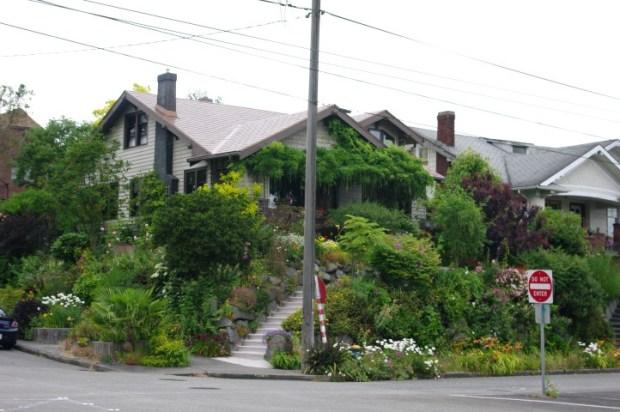 The ultimate garden.