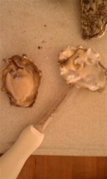Whole Foods oysters ... professionally shucked.