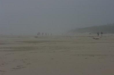 More foggy coast.