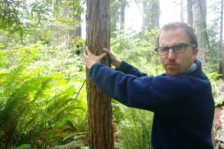 Paul measuring the circumference of a redwood. Shouldn't it be bigger?
