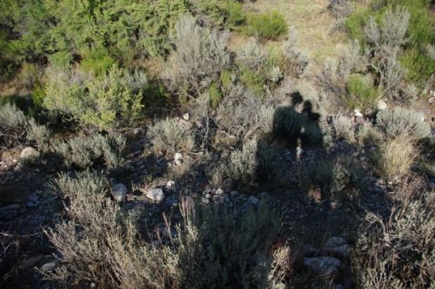 Us in the sagebrush.