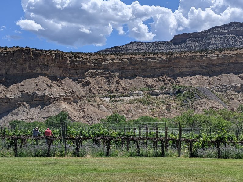 Pruning at Colterris in Palisade