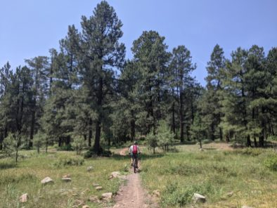 Trails at Turkey Springs.