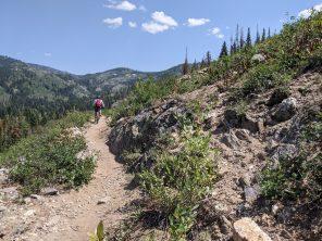 A trail at Buffalo Pass.
