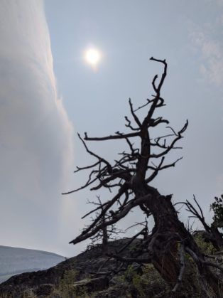 The edge of a smoke plume