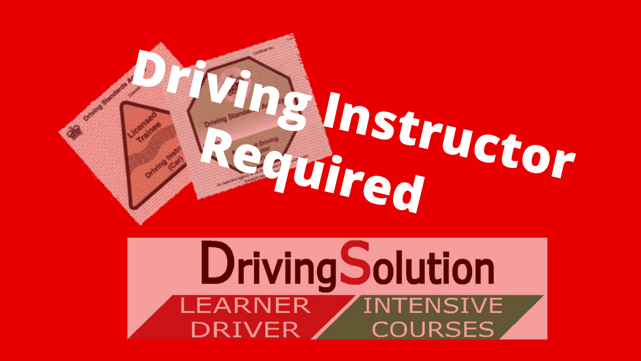 driving instructor franchise