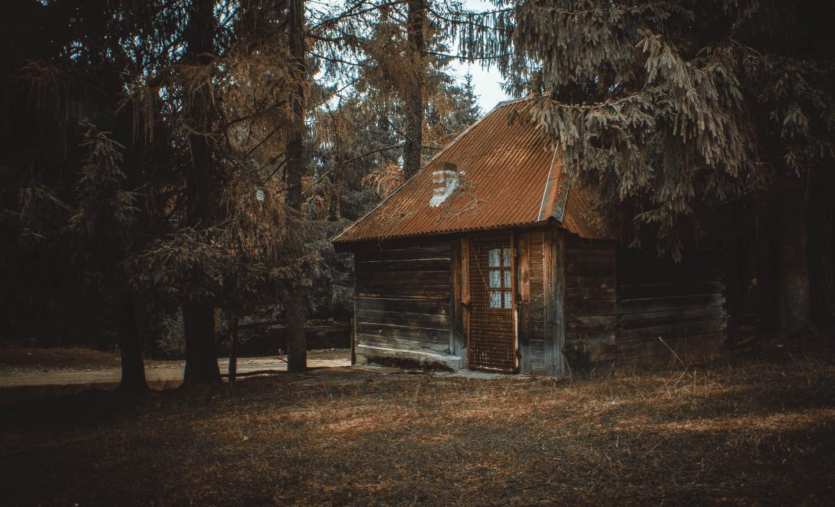 Cabin In Michigan
