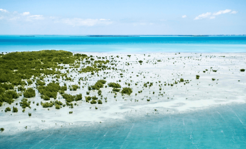 John Pennecamp Coral Reef State Park
