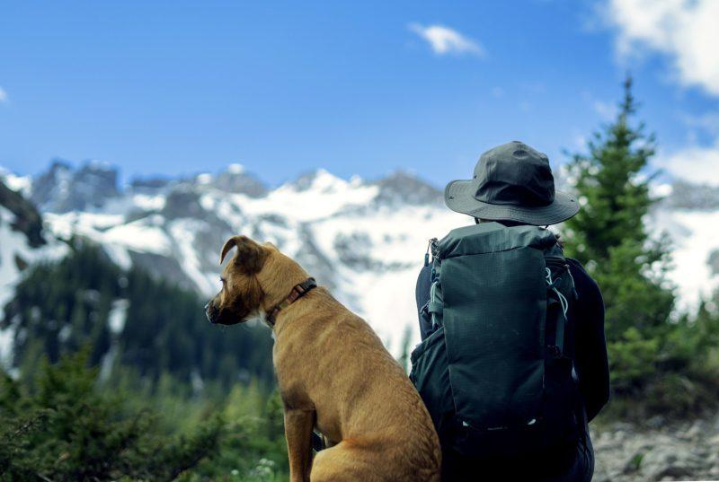 Free Camping Near Telluride.jpg
