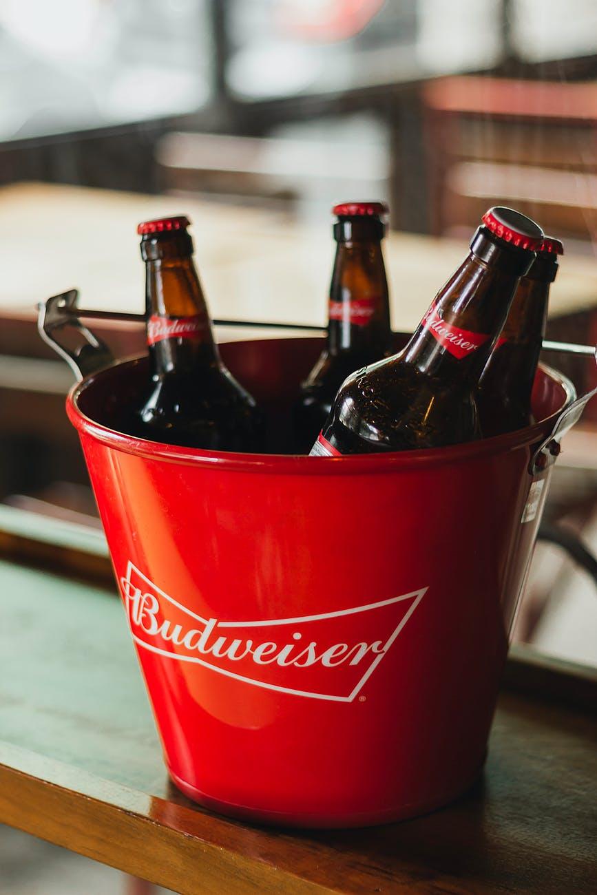 beer bottles in bucket