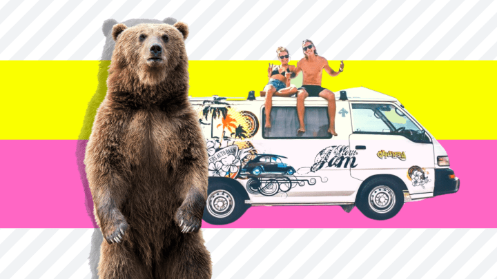 Can (And Will) A Bear Break Into Your RV?